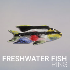 Pins & Magnets Freshwater Fish