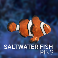 Pins & Magnets Saltwater Fish