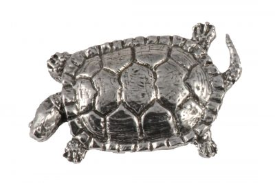 Pond Turtle Pin