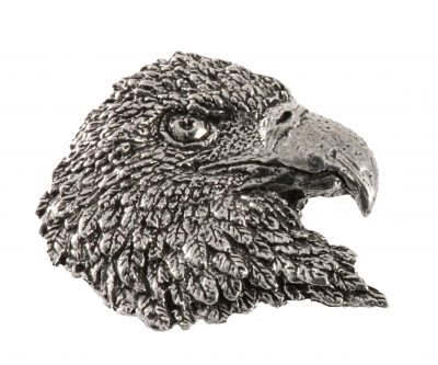 Bald Eagle Head Premium
