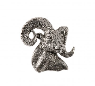 Bighorn Sheep Headpremium