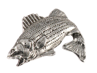 Striped Bass Leaping
